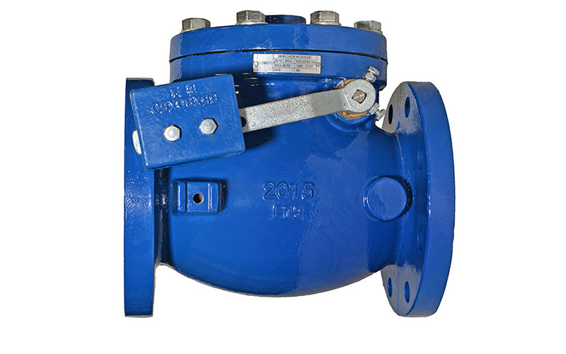 Model 93LW Swing Check Valve With Lever | Flomatic Valves