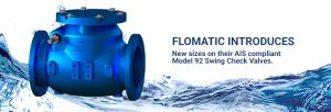 new sized AIS compliant swing check valve
